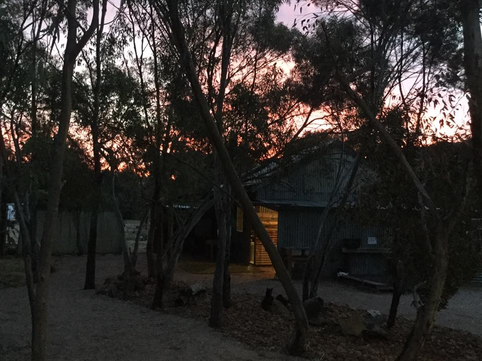 Brisbane Nighlife